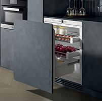 Zanussi Onderbouw koelkast